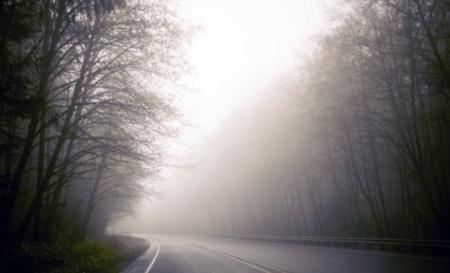 The fog of fall