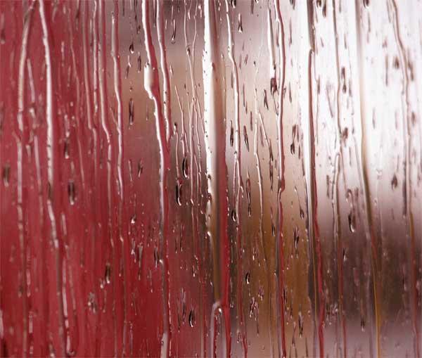 Rhythm of the rain and a return to rhythm of life