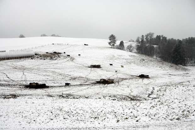 Schools delayed because of snow