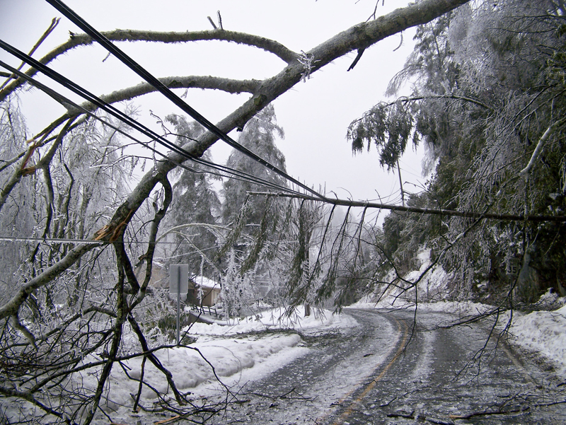 High winds, icy limbs leave more Floyd Countians in the dark