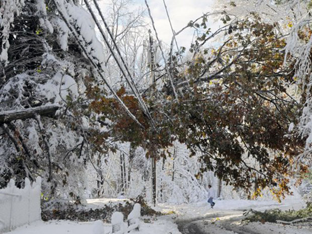 Heavy snow, downed trees elsewhere in Virginia