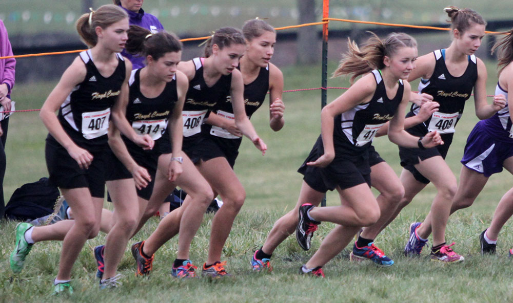 FCHS cross country teams finish third in state meet