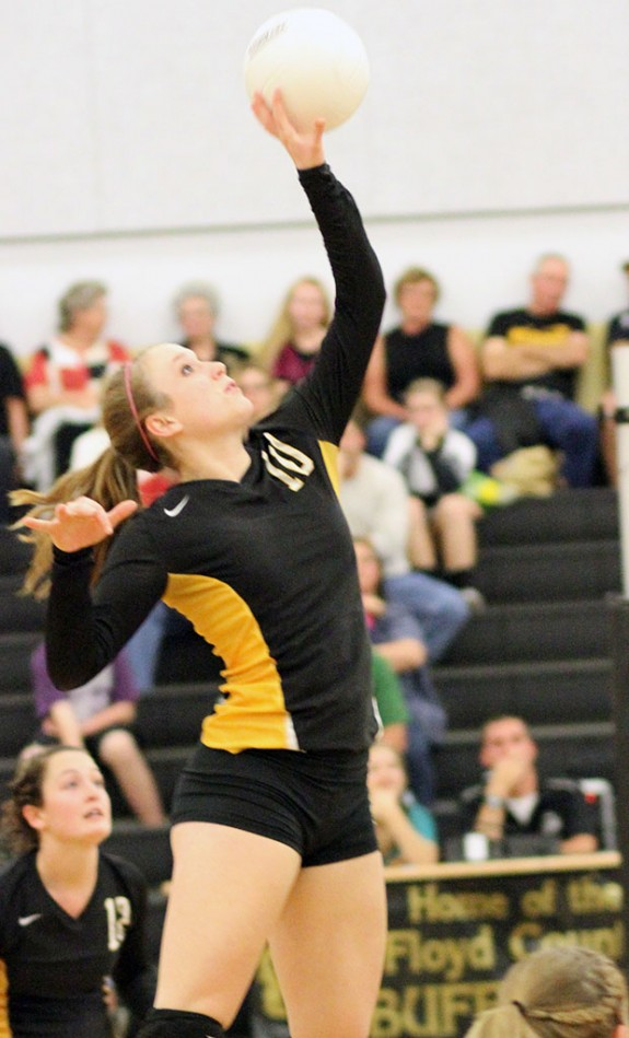 Big volleyball, cross country playoff wins
