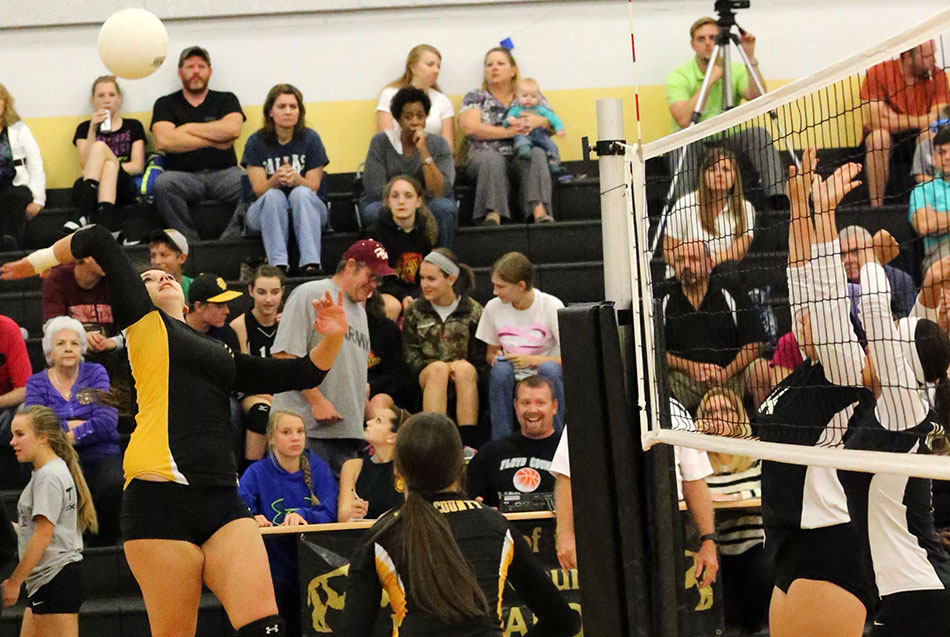 Hard-fought night for volleyball teams