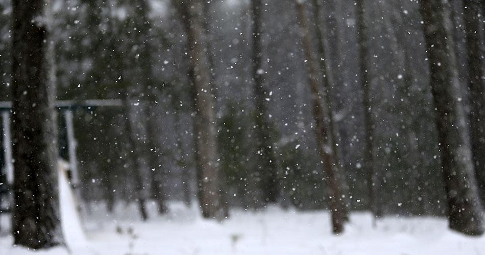 More snow ahead? Yep